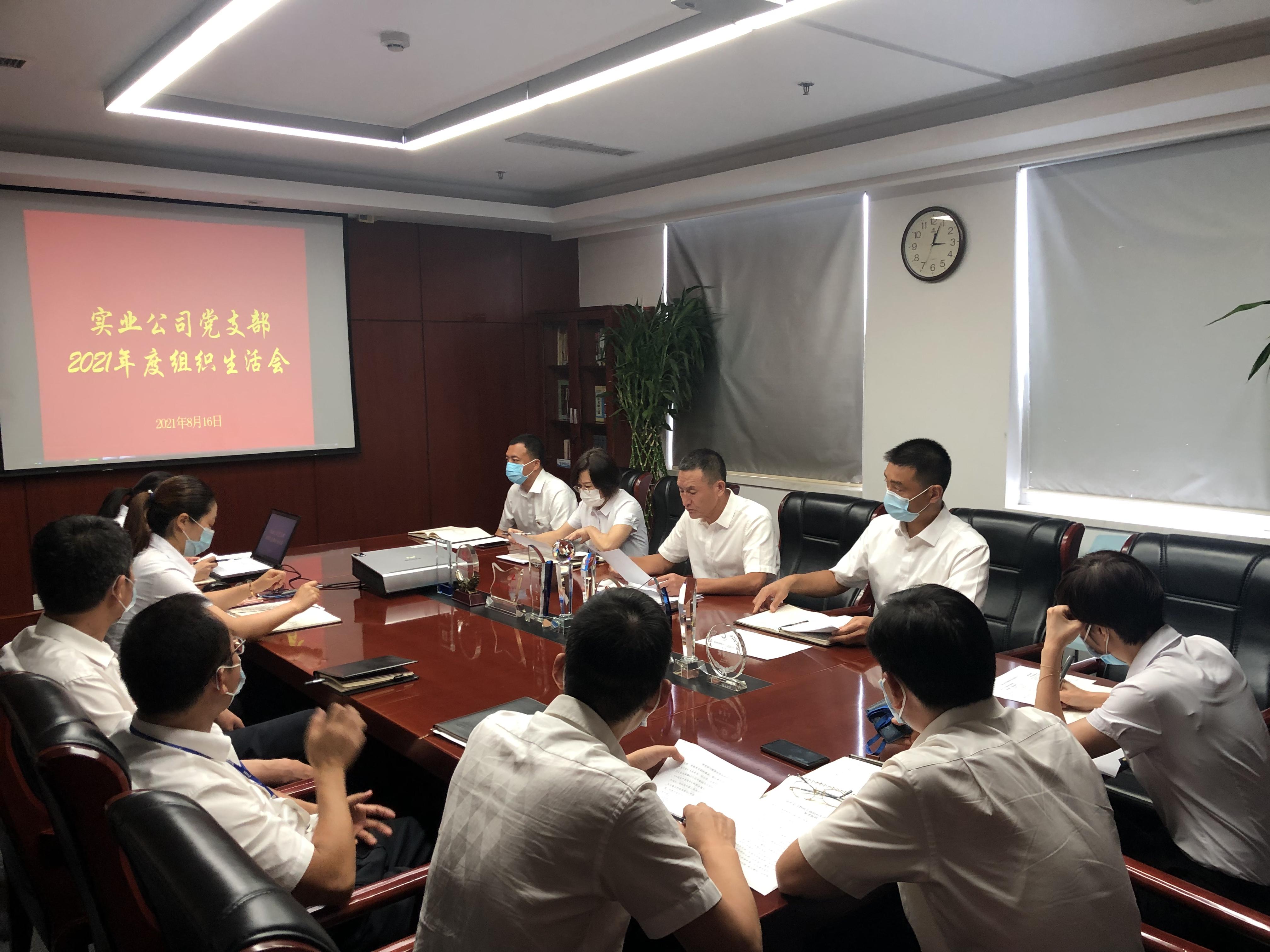 实业公司党支部召开党史学习教育专题组织生活会